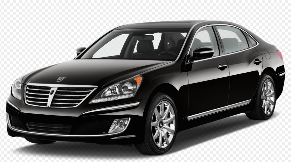 2013 Hyundai Equus Owners Manual
