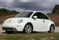 2002 Volkswagen Beetle User Reviews CarGurus